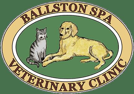 Ballston spa vet clinic